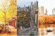 Есен в Ню Йорк пейзажи