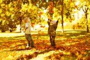 Семейни игри през есента