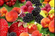 Какъв плод си? сн. Pixabay
