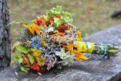 Домашните билки срещу коронавирус и други грипни болести сн. Pxhere