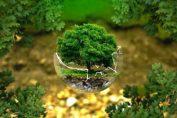 20 лесни начини да спасите планетата